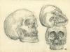 Der eigene Schädel, durch Abtasten porträtiert/My own skull reconstructed by palpating, 1952